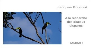TAMBAO: In search of missing birds - Jacques Bouchut