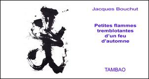 TAMBAO: Tiny flames flickering on an automnal fire - Jacques Bouchut